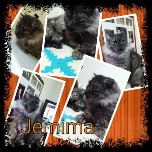** Jemima