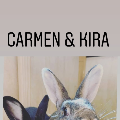 Carmen and Kira -  Rabbit