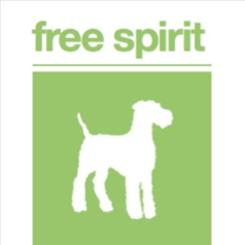 Nancy  - Jack Russell Terrier X Dog