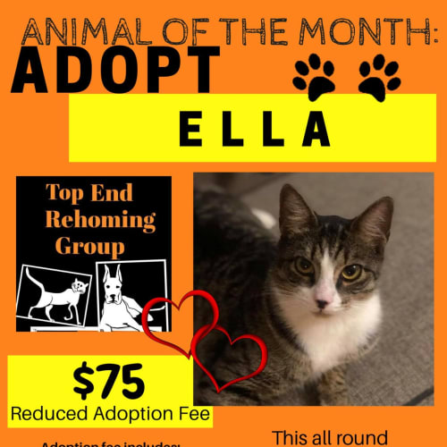 Ella - Animal of the Month!