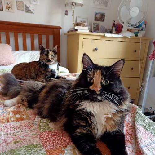 Dusty and Lola