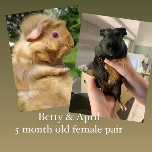 Betty & April