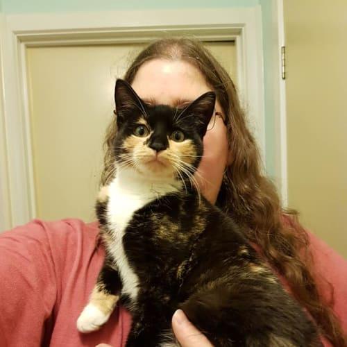 Jenny **2nd Chance Cat Rescue**