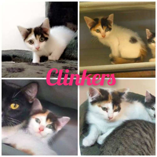 Clinkers