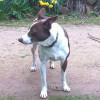 Photo of Zac