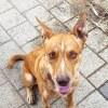 Photo of Miro