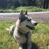 Photo of Keesha