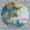Photo of June