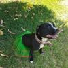 Photo of Billie