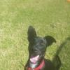 Photo of Echo