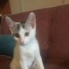 Photo of Eli