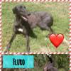 Photo of Fluro