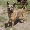 Photo of Perrick