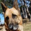 Photo of Sammy
