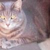 Photo of Slater