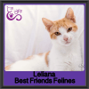 Photo of Leliana
