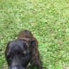 Photo of Stormee