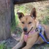 Photo of Zoe