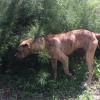 Photo of Bex