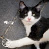 Photo of Philly