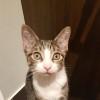 Photo of Vasco
