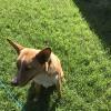 Photo of Chayce