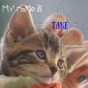 Photo of Tane