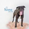 Photo of Sammi