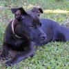Photo of Aprill