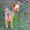 Photo of Tabitha