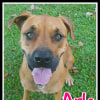 Photo of Arla