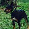 Photo of Jeda