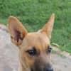 Photo of Gwena