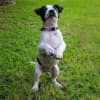 Photo of Matilda