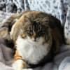 Photo of Marie (Madam Marie!)