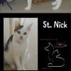 Photo of St Nick