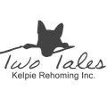 Two Tales Kelpie Rehoming
