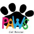 Paws Cat Rescue