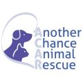 Another Chance Animal Rescue