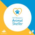 Port Macquarie Animal Shelter