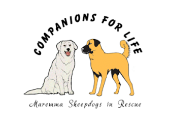 Large cfl logo maremma for petrescue