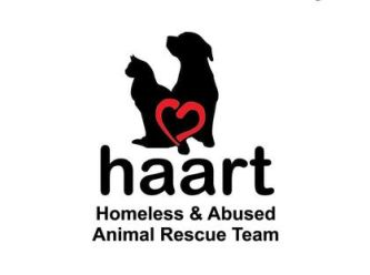 Homeless and Abused Animal Rescue Team
