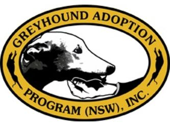 Greyhound Adoption Program NSW