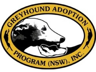 Greyhound Adoption Program NSW