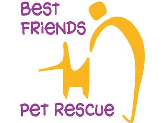 Large best friends logo square