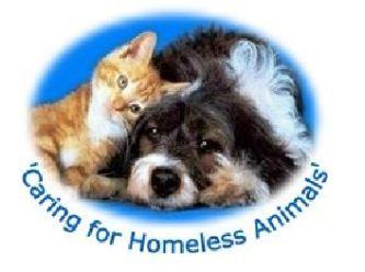 South Gippsland Animal Aid