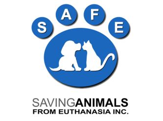 SAFE Newman (Saving Animals From Euthanasia)