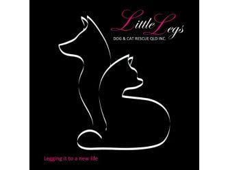 Little Legs Dog & Cat Rescue Qld Inc