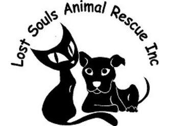 Lost Souls Animal Rescue