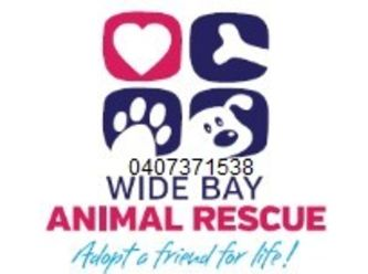 Wide Bay Animal Rescue